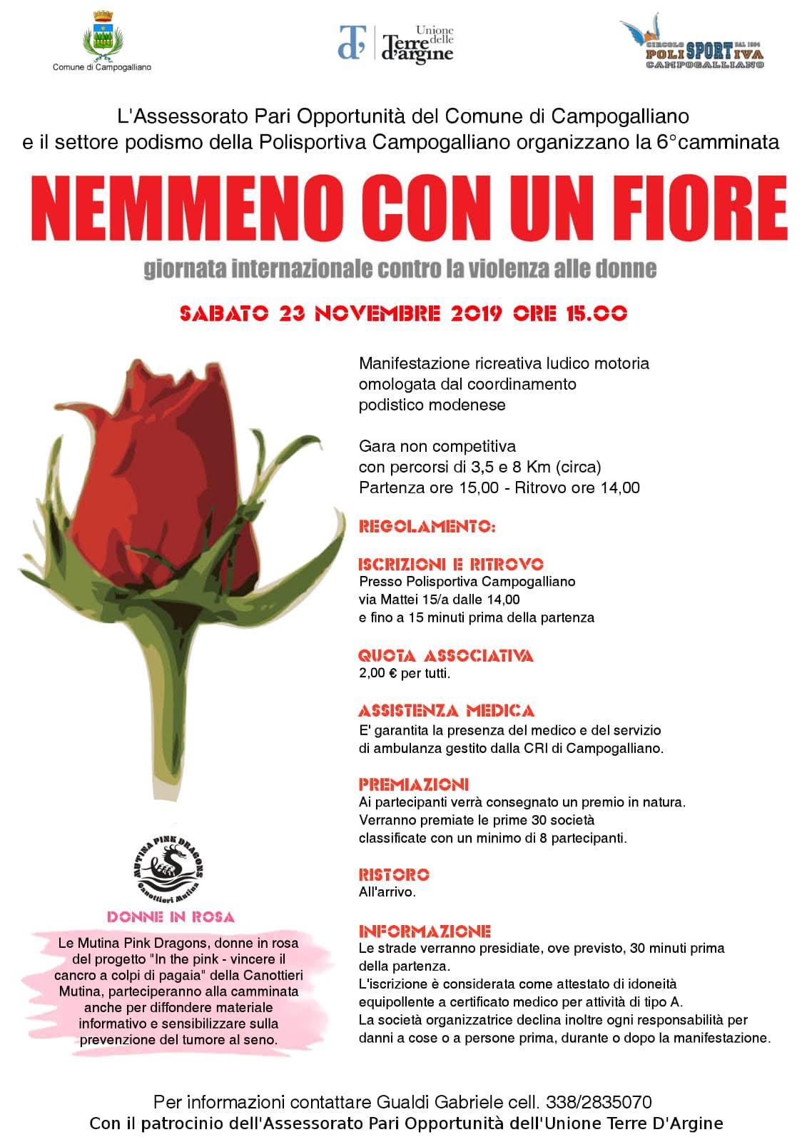 'Nemmeno con un fiore', in cammino contro la violenza sulle donne